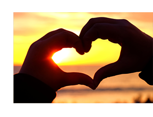 Charity energy suppliers you love